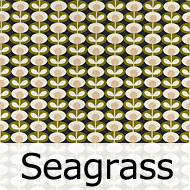 オーラ・カイリー Oval Flower Seagrass
